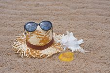 Free On The Beach Royalty Free Stock Photos - 14853038