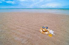 Free On The Beach Stock Photo - 14853180