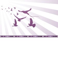Abstract Background With Birds. Stock Photography