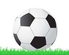 Free Soccer Ball Stock Images - 14853934