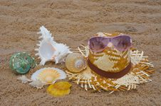 Free On The Beach Royalty Free Stock Image - 14853976