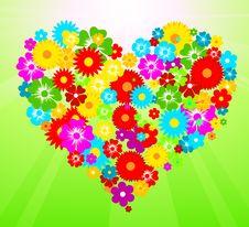 Free Flower Heart Stock Photos - 14854133