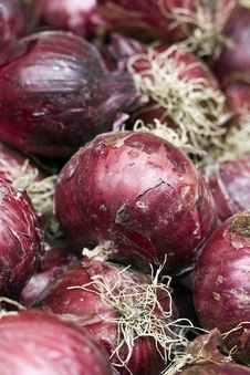 Free Red Onions Royalty Free Stock Image - 14854406