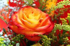 Free Bouquet Stock Photos - 14854943