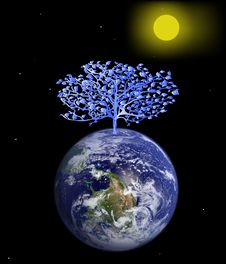 Tree On The Earth. Stock Photography