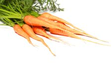 Free Fresh Carrots Stock Images - 14857464