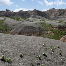 Free Badlands Of South Dakota, USA Royalty Free Stock Photos - 14857888