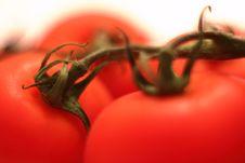 Organic Tomato Macro Stock Photos