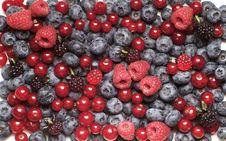 Free Fresh Berry Fruit Royalty Free Stock Photo - 14858975