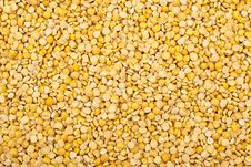 Free Dried Yellow Pea Stock Image - 14859841