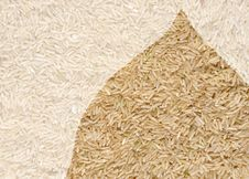 Free Long Grain Rice Royalty Free Stock Photos - 14861358