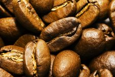 Free Coffee Grains Stock Photos - 14861563