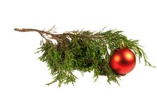 Free Christmas Tree And Red Christmas Ball Stock Photography - 14861832