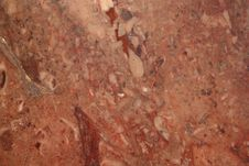 Free Close Up Of A Red Rock Texture Stock Photo - 14864540