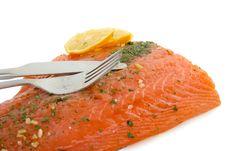 Free Salmon Stock Photography - 14864792