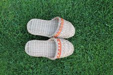 Free Footwear On The Green Grass Royalty Free Stock Photography - 14865287