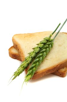 Wheat Toasts With Ears Royalty Free Stock Image