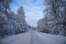 Free Winter Road Royalty Free Stock Images - 14869109