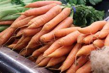 Free Carrot Stock Photos - 14869363