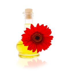 Free Vegetable Oil With A Red Gerbera Royalty Free Stock Photo - 14870055