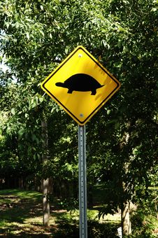 Warning For Turtle S Crossing. Royalty Free Stock Photos