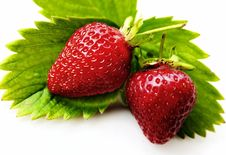 Free STRAWBERRY - GREEN LEAVES Royalty Free Stock Photography - 14871667