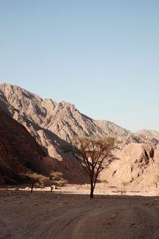 Free Desert Royalty Free Stock Photos - 14871928