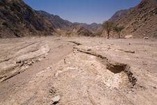 Free Desert Royalty Free Stock Photography - 14872137