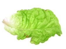 Free Lettuce Leaf Royalty Free Stock Photos - 14872218
