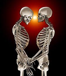 Free Skeletons In Love Stock Image - 14872381
