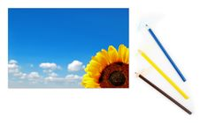 Free Sunflower And Cloudy Sky On A Paper With Pencils Royalty Free Stock Image - 14872456