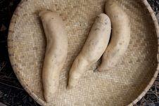 Basket Of Sweet Potatoes. Royalty Free Stock Photography