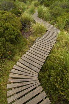 Free Hiking Path Stock Image - 14874351