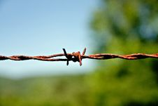 Free Rusty Wire Stock Photography - 14874572