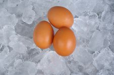 Free Boiled Or Raw Egg Royalty Free Stock Photo - 14874995