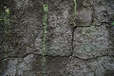 Free Grunge Wall Royalty Free Stock Image - 14875166