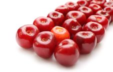 Free Isolated Row Of Cherries Stock Photo - 14876050
