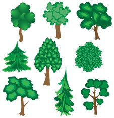 Collection Of Nine Trees. Royalty Free Stock Images