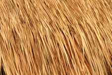 Straw Roof Stock Photo