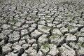 Free Soil Stock Image - 14889881