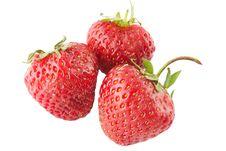 Free Three Ripe Strawberry Royalty Free Stock Image - 14881466