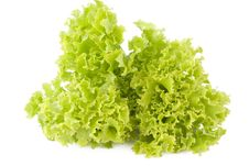 Free Green Salad (lettuce) Royalty Free Stock Image - 14881496