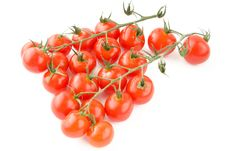 Free Shiny Tomatoes With Stem Stock Photo - 14881650