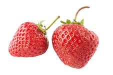 Free Fresh Strawberry  Isolated Stock Images - 14881904