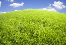 Free Green Field Stock Photo - 14883820