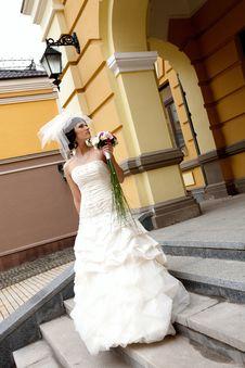 Free Young Beautiful Bride Stock Photos - 14884313