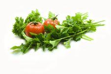 Free Celery Parsley Tomatoes Stock Photos - 14885713