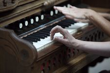 Free Hands Playing Piano Stock Photo - 14888080