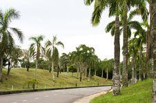 Free Road In Malaysia Stock Photos - 14888923
