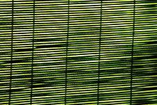 Free Green Striped Background Stock Photo - 14889740